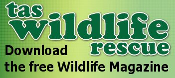 Download Tas Wildlife Rescue Magazine: Download Tas Wildlife Rescue Magazine